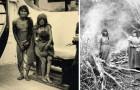 Ausgerottet durch europäische Kolonialmächte: Der Genozid, an den heute nur noch eine klägliche Statue erinnert
