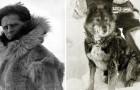 Kennen Jullie Balto Nog Die Honderden Levens Redde In Alaska? Zo Is Het Verhaal ECHT Gegaan