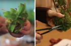 Plantas en miniatura para colgar en casa: asi es como se realizan estas pequeñas joyas
