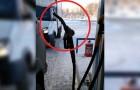 Cuanto hace frio en Rusia? Lo suficiente de hacer suceder extraños episodios como estos!