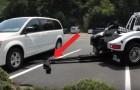 Un curioso medio se acerca al automovil: aquello que ocurre en pocos segundos los hara preocupar