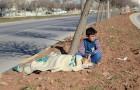 Ce qu'a fait cet enfant à la vue d'un chien renversé est un exemple pour tous