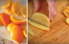 Cascaras de naranjas confitadas al chocolate fundente: descubre como hacer esta delicia siciliana