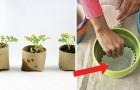 Progetti, idee di giardinaggio e fai da te che ogni amante del verde dovrebbe conoscere
