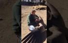 Ein Kondor fliegt von den Bergen runter, um den Mann zu grüßen, der ihm das Leben gerettet hat