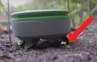 Las hierbas crecen a ritmos imposibles? Este mini-robot hace el trabajo al lugar tuyo
