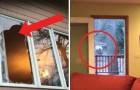 Als ze thuiskomen ontdekken ze dat er een raam is gebroken: de indringer liet zich al snel zien!