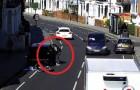 Video di Ladri