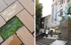 Video Street Art-Videos Street Art