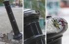25 Fälle von brillantem urbanen Vandalismus