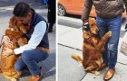 This dog is known throughout the neighborhood for her curious passion --- hugging passers-by!