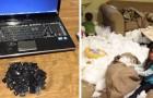 25 photos montrant qu'un enfant laissé seul est une force vraiment destructrice
