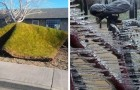 13 amusing pranks played by the wind