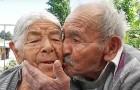 18 immagini che dimostrano che l'amore è tutto ciò di cui abbiamo davvero bisogno