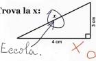 Alcune tra le risposte più geniali che gli insegnanti abbiano trovato nei compiti in classe