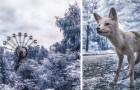 Zschernobyl: Die spektakulären Fotos in Infrarot, 31 Jahre nach der Katastrophe