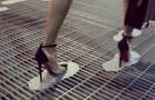 Video Video's van een Genie Genie