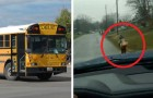 His son is a bully on the school bus, so he makes him run for one mile in the rain to school