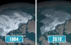 Questa mappa della NASA mostra quanto sia cambiato l'aspetto dell'Artico in 30 anni