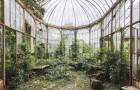 Rivendicati dalla Natura: un fotografo ci mostra la bellezza di luoghi abbandonati