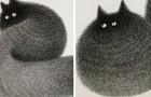 Video Katzenvideos Katzen