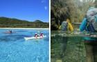 14 Orte, die die Freunde von kristallklarem Wasser unbedingt besuchen sollten