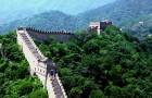 In 5 Jahren hat China ein Gebiet größer als Italien mit Bäumen bedeckt