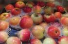 Hier ist die effektivste Methode, um Pestizide aus Obst und Gemüse zu beseitigen