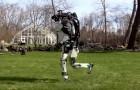Die Art, wie dieser Humanoid durch den Rasen läuft, lässt uns erkennen, wie weit die Robotik gekommen ist