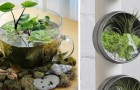 24 precious ideas for creating a terrarium that you must not miss!