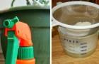 10 recettes de pesticides faits maison qui prendront soin de votre jardin d'une manière naturelle.