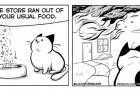 La moglie lo ha convinto a pubblicare le vignette sul loro gatto: i fumetti di questo artista sono uno spasso