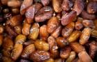 Voici ce qui arrive à votre corps si vous mangez 3 dattes par jour.