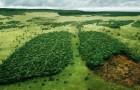 24 tra le campagne pubblicitarie sull'ambiente di maggiore impatto, su cui vale la pena riflettere