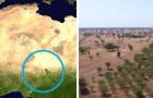Vidéos sur l' Afrique