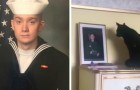 Een jongen vertrekt voor militaire dienst: de reactie van de kat liet zijn moeder in tranen achter