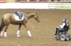 Un cavallo si avvicina ad una donna sulla sedia a rotelle: lo spettacolo che segue rapisce il pubblico