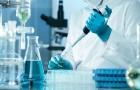 Testato in laboratorio un vaccino contro il cancro efficace al 100%: ha curato la malattia e bloccato la recidiva nei topi