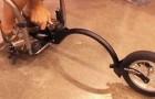 Ein Mann im Rollstuhl zeigt seine fantastische Erfindung