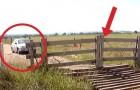 Parece um portão de madeira normal, mas espere até o carro se aproximar...