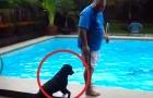 Un hombre esta en pie sobre el borde de la piscina: lo que hace el perro es...DIABOLICO!