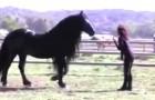 Sa dresseuse l'appelle : ce MAGNIFIQUE cheval vous laissera bouche-bée