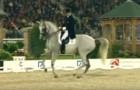 Un caballo maravilloso sale a la pista: cuando comienza la musica el publico queda con la boca abierta