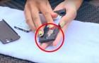 Euch fällt das Handy ins Wasser? Dieser Tipp rettet sein Leben!