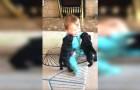 Ces 2 chiots n'ont jamais vu un bébé : regardez leur nouvelle amitié!