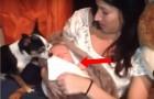 Un cane si accorge che il neonato sta dormendo... Il gesto che fa è troppo tenero