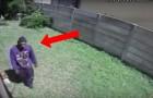 Um ladrão entra em casa, mas pouco depois alguém vai fazer ele mudar de ideia!
