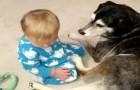Das Kind kann die Augen nicht offen halten... Was am Ende passiert, wird euer Herz zum Schmelzen bringen