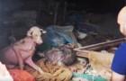 Toen deze moeder en zoon werden gevonden, waren ze meer dood dan levend... dankzij deze helden, zijn ze er nu stukken beter aan toe!