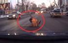 Un uomo cade in mezzo alla strada, ma la reazione delle persone non si lascia attendere